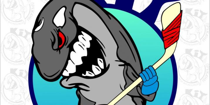 3 марта в 18.00 - хоккей. Пружанские киты против Сталкера из Барановичей