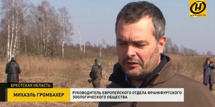 В Пружанском районе пытаются спасти самое древнее низинное болото Европы. Видео