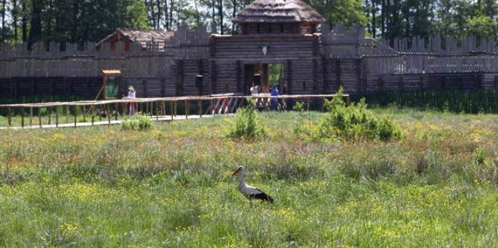 В глубь веков на машине времени: в Беловежской пуще открылся археологический музей. Фото и видео