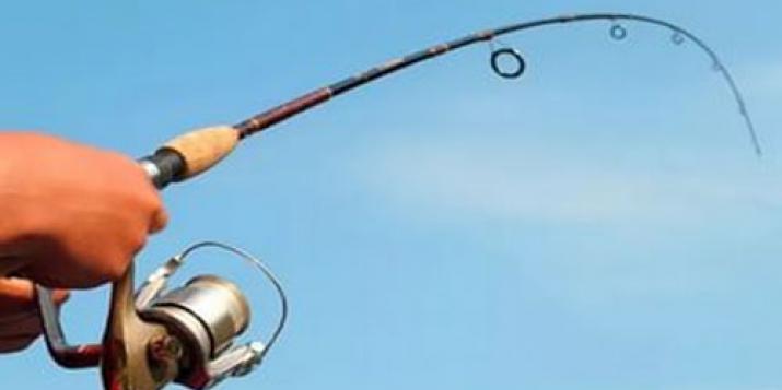 Расторгнут договор аренды пруда возле Семенчи-2: его нет в списке пригодных для ведения рыболовства