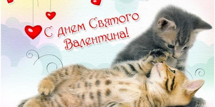 С Днём Святого Валентина, дорогие читатели pruzhany.net!