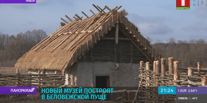 В Беловежской Пуще начались раскопки(видео)