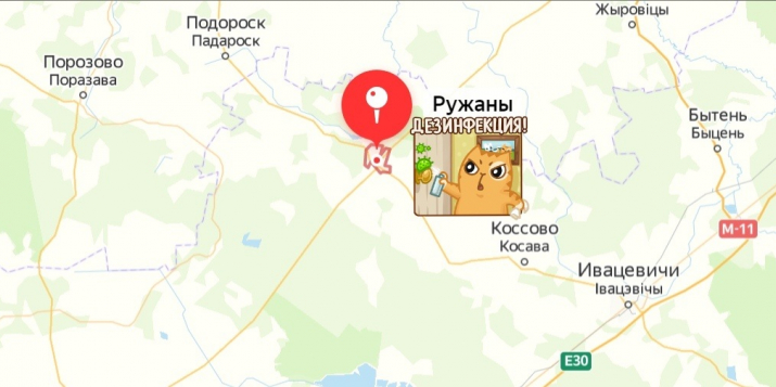 Группа БРЕСТ COVID19:Как поселок Ружаны в Брестской области стал очагом распространения коронавируса
