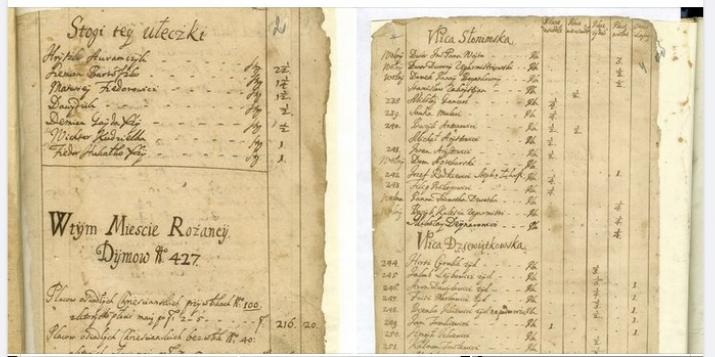 Публікуем інвентар Ружанаў: у Ружанах ужо ў 1687 г. былі звярынец, Стары і Новы рынак, млыны, масты