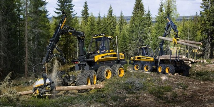 Пружанский лесхоз собирается закупить лесозаготовительный комплекс(харвестер, форвардер) за 3450000р