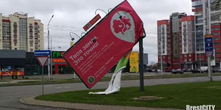 Будьте осторожны: Сильный ветер в Брестской области валит деревья и портит билборды