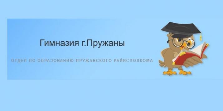 На сайте гимназии г.Пружаны появилась информацию об исполняющей обязанности директора