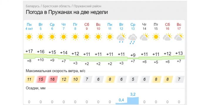 В Пружанах завтра и послезавтра будет очень сильный ветер. Объявлен оранжевый уровень опасности