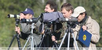 24 августа - чемпионат-тренинг по спортивной орнитологии для новичков в Пружанском районе
