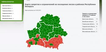 В Пружанском районе введён запрет на посещение лесов населением