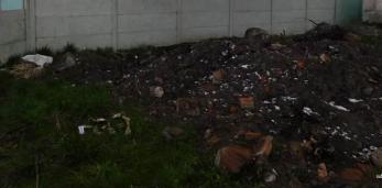 В центре Пружан во время земляных работ и удаления пней найдены костные останки,которым больше 60лет