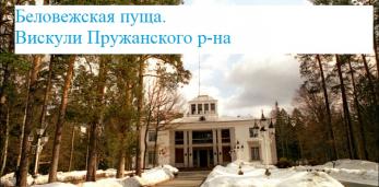Лукашенко пригласил глав стран СНГ посетить Беловежскую пущу,хочет рассказать подробности конца СССР