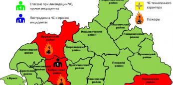 29.06.2021 в 14-04 поступило сообщение о пожаре в деревянном доме в д. Старуны Пружанского района