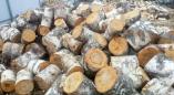 В Пружанском районе мужчина погиб при погрузке дров в автомобиль