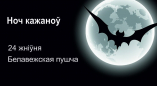 24 жніўня — Ноч кажаноў у Белавежскай пушчы!