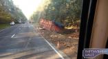 На дороге Р-85 в Пружанском районе расцепился МАЗ и прицеп с сахарной свеклой