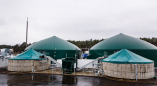 Литовцы построили в Беларуси, в т.ч. на Пружанщине, 5 электростанций на коровьих лепешках за 25 млн$