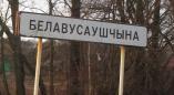 У Белавусаўшчыне знішчаецца апошні архітэктурны помнік