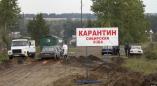 В Брестской области нашли сибирскую язву. Это первый случай в Беларуси за 20 лет.