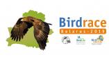 Стартуе BirdRace–2019. Сяброўская сустрэча каманд пройдзе на аграсядзібе «Залессе» (Пружанскі раён)