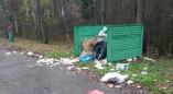 Фотофакт: как выглядят мусорные баки возле Пружан