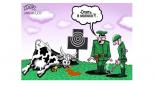 Россельхознадзор снова допустил в Россию продукцию из Пружан, но через месяц может вернуть запрет
