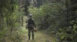 «Энциклопедия безопасности»: поведение в лесу – новый выпуск рубрики от МЧС