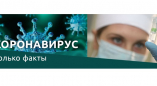 На Пружанщине коронавирусом переболело около 1% населения, 700 человек умерло от него в Беларуси