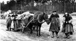 Как царские власти выселяли из деревни Харьки Пружанского и из всей Западной Беларуси в 2015 году