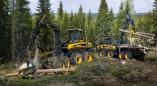 Объявлено об отмене процедуры закупки лесозаготовительного комплекса Пружанским лесхозом, но...