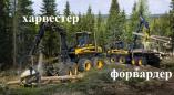 Пружанский лесхоз 6 июля проведёт торги по закупке лесозаготовительного комплекса. Нач.цена 2941100р