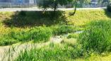Ответы властей, почему в 2021г. в Пружанах не построят фонтан и не почистят водоёмы