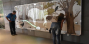 Интерактивно-мультимедийный музей зубра открылся в польской части Беловежской пущи.